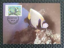 MALEDIVES MK TROPICAL FISH FISCHE FISCH MAXIMUMKARTE CARTE MAXIMUM CARD MC c5269