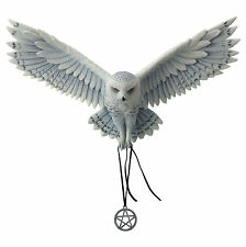 Awaken Your Magic by Anne Stokes figure statue sculpture Owl Flying collectible