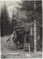 Tiroler Jagdhütte, Orig.-Photo um 1910