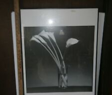 "Framed B&W Poster of Tall Flowers (Arum Lillies) in a Glass Vase 20"" x 27"""