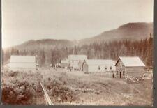 1800's Cabinet Photo Porcupine City, Alaska, MIning Community, Ghost Town