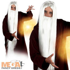 Wizard Wig & Beard Mens Fancy Dress Fairytale Magical Book Week Adults Accessory
