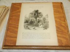 1874 Antique Print/A GARDEN IN CHARLESTON/SC