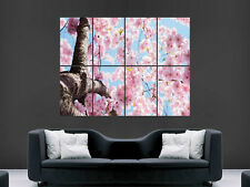 BLOSSOM TREE POSTER NATURE SKY  PICTURE PRINT LARGE HUGE