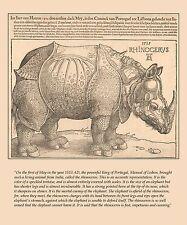 Durer's Rhinoceros, Albrecht Durer - Fine Art Print Reproduction