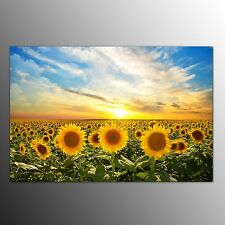 Canvas Wall Art Canvas Prints Painting For Home Decor Sunflowers-No Frame