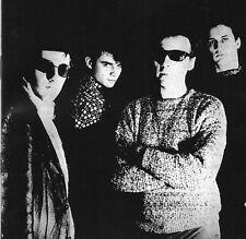 Television Personalities Painted Word UK CD 13 Tracks Indie C86 1990 Dan Treacy