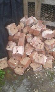 Half red bricks job lot ,garden edging,paths