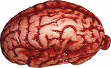 HALLOWEEN BRAIN BODY PARTS CEMETARY  HAUNTED HOUSE PROP DECORATION