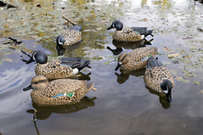 Flambeau Blue Wing Teal Waterfowl Hunting Decoys, 6pk- 4 Drakes and 2 Hens