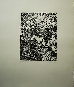 Sergio Birga xilografia Il Vento 1976 50x35 firmata numerata pubblicata