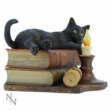 Nemesis Now The Witching Hour Black Cat Fantasy Figurine Ornament Sculpture 20cm