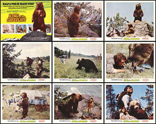 GRIZZLY BEAR 11x14 posters DISNEY/KING OF THE GRIZZLIES orig 1970 lobby card set
