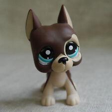 Chocolate Great Dane Pubby Blue eyesLittlest Pet Shop Lps mini Action Figures #