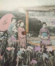 Japan 6 Geisha Garden Flowers Vtg Postcard Pretty Women Parasol Hand Colored MIJ