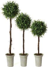 "Sullivan 22""-30"" Boxwood Artificial Trees Set of 3"