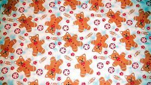 Cat Cookies Gingerbread Cat Treats Holiday Kitten Christmas Santa Kitten