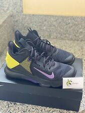 Nike Lebron Wotness IV