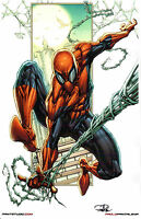 SPIDERMAN ART PRINT by PAOLO PANTALENA SIGNED 11x17