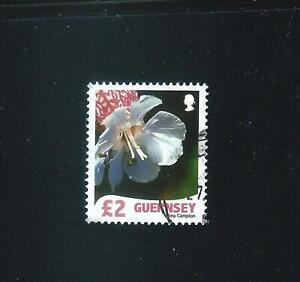 Guernsey – £2 Flower Definitive 2008 used Sc# 984