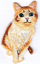 Kitten Iron On Embroidered Patch Cat Kitty Pets Tabby