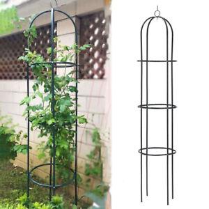 Twisting Climbing Plant 1.9m Outdoor Garden Obelisk Trellis Metal Support Frame