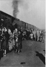 7x5 Gloss Photo ww509B World War 2 Pictures Treblinka tl1
