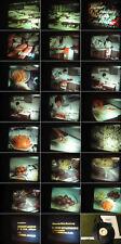 16 mm Film Arbeit 1969.Kochen von Gemüse.Ernährungslehre Vitamien.Antique Movie