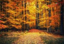 Autumn Forest Fallen Leaves Path 10x6.5ft Background Studio Photo Props Bakdrop