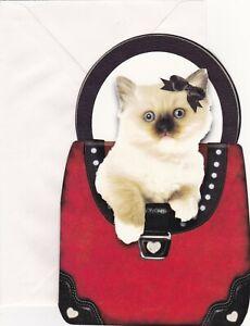 Himalayan Cat Blank Inside Greeting Card