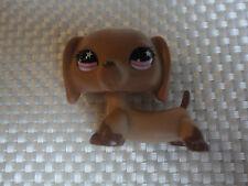 Littlest Pet Shop # 932 STAR EYE Etoile Yeux Dachshund Dog LPS CHIEN HUND TECKEL