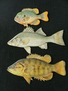"""White/Sacramento Perch/Sunfish 13"""" To 20"""" Long Hand-Carved 3 Wooden Wall Plaques"""