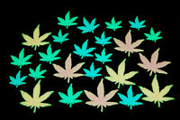 24 Piece Glow in the Dark MultiColor Marijuana Weed Pot Leafs