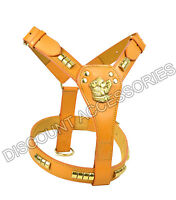 STAFF STAFFY STAFFIE STAFFORDSHIRE BULL TERRIER LEATHER DOG HARNESS