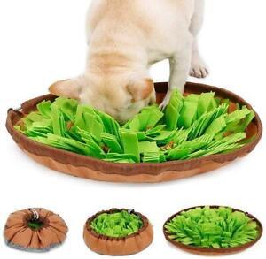 Schnüffelteppich Für Hunde Riechen Trainieren Matte Intelligenzspielzeug