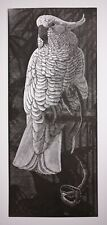 C. F. Tunnicliffe limited edition wood engraving of a 'Cockatoo'