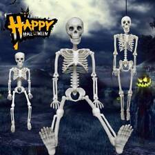 Halloween DIY Decor Posable Skeleton Scary Man Bone Creepy Prop Party Decoration