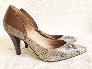 Womens Corso Como Pumps Pointy Heels 8 Snake Leather Brown