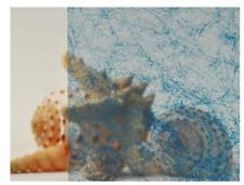 "Shoji Blue Gossamer Clear Decorative Privacy Window Film 47"" Wide x 1yd."