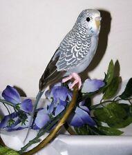 "Gray/Blue PARAKEET BUDGIE REPLICA Collectible FAKE taxidermy 8"" Bird prop NEW"