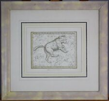 Ursa Major Bear Vintage Original Jamieson 1820 Celestial Atlas Map Print Plate