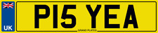 FUNNY RUDE PISS NUMBER PLATE PIS YEA CHEEKY REGISTRATION P15 YEA NEED A WEE PIS
