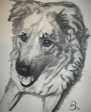 An original charcoal drawing of your pet or pets