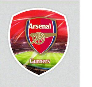 3D Medium Universal Sticker Arsenal FC Official Gunners for Console iPad New