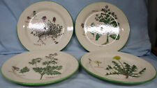 Williams Sonoma Culinary Herbs Salad Plate set of 4