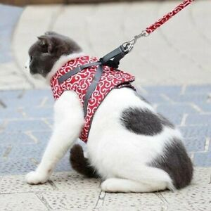 Cat Vest Harness and Leash Set to Outdoor Walking, Adjustable, Red, New