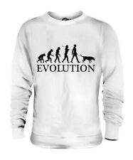 BEAUCERON EVOLUTION OF MAN UNISEX SWEATER MENS WOMENS LADIES DOG BEAUCE GIFT
