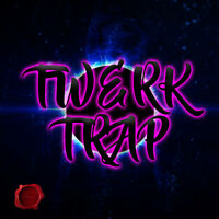 3700... Twerk / Trap Music mp3 songs on a 32gb usb flash drive