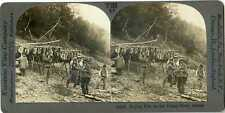 Alaska ~ INDIANS DRYING FISH ON THE YUKON RIVER ~ Stereoview 11518 T198 20156 fx