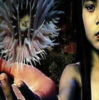Lifeforms von Future Sound of London,the, Future Sound of ... | CD | Zustand gut
